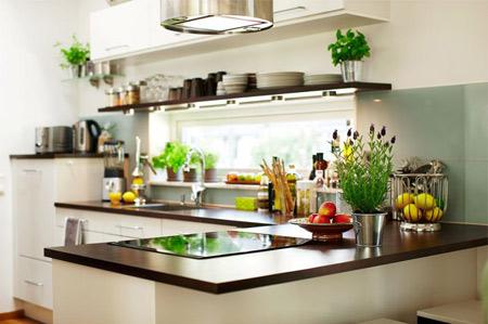 Những bí quyết dưới sẽ giúp bạn xua tan vi khuẩn trong nhà bếp