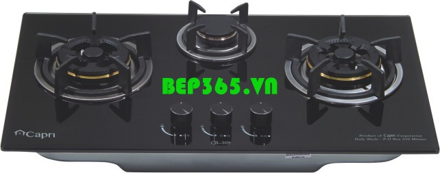 Bếp gas CAPRI CR-309